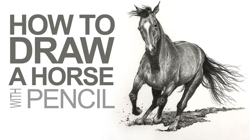how to draw a horse graphite pencils
