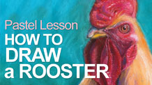 How to Draw a Rooster with Pastels