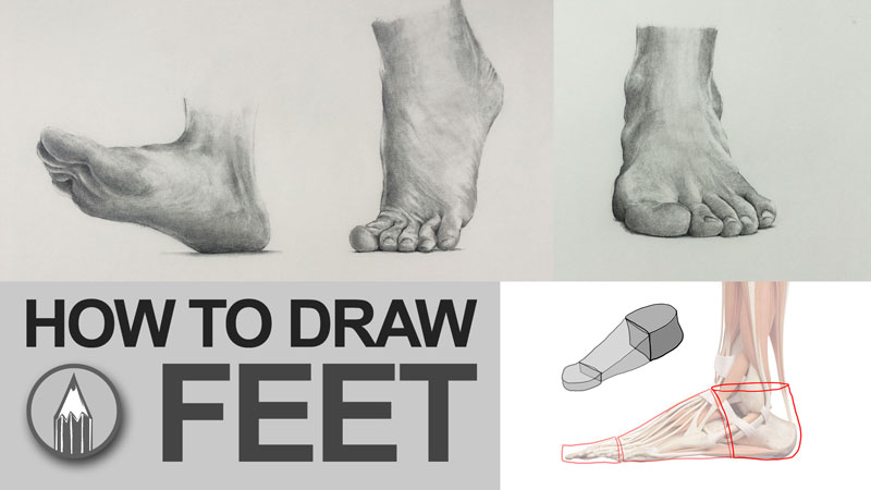 How to Draw Feet