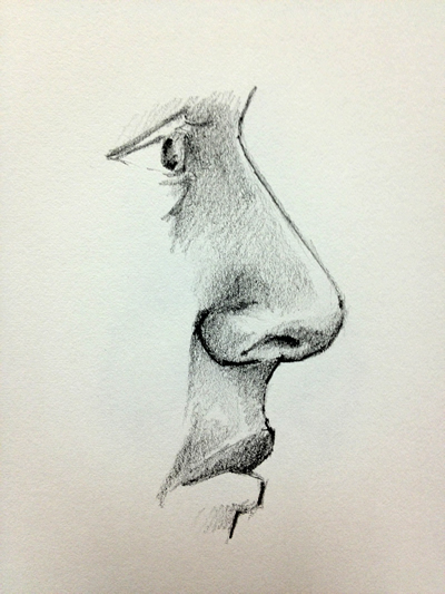 Nose in Profile drawing