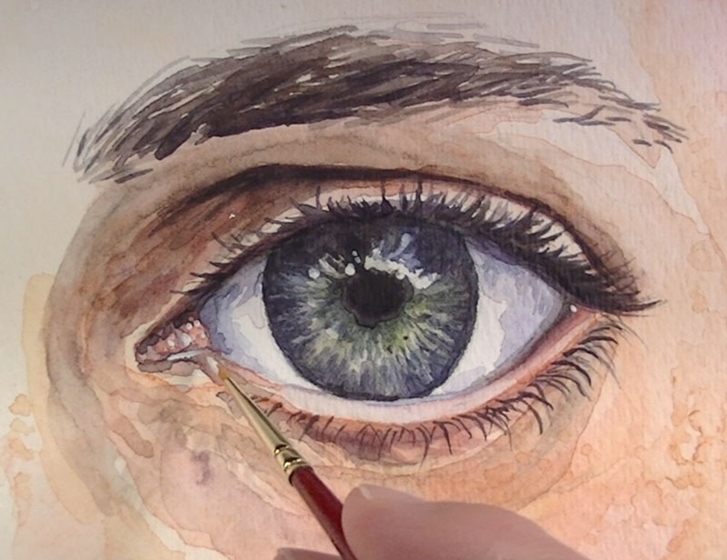 Highlights are added to make the eye look wet