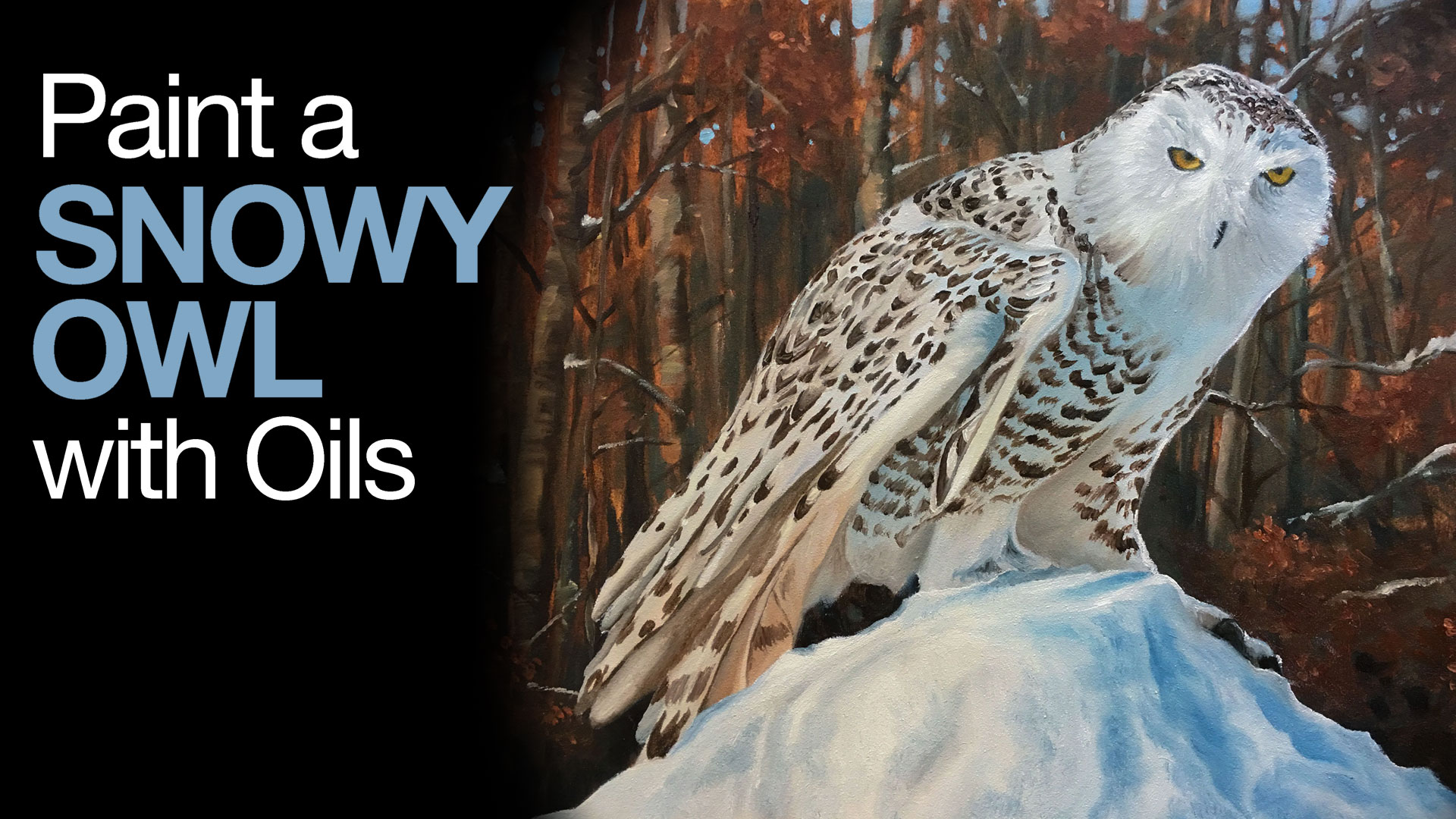 Oil Painting Lesson - Snowy Owl