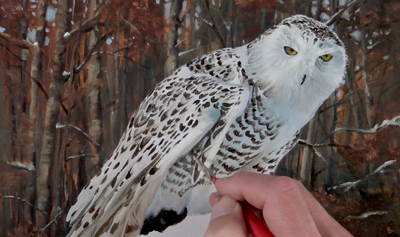 Painting the Pattern of the Owl