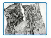 Texture Drawing Lesson Plan