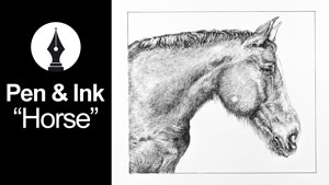 Draw a horse with pen and ink