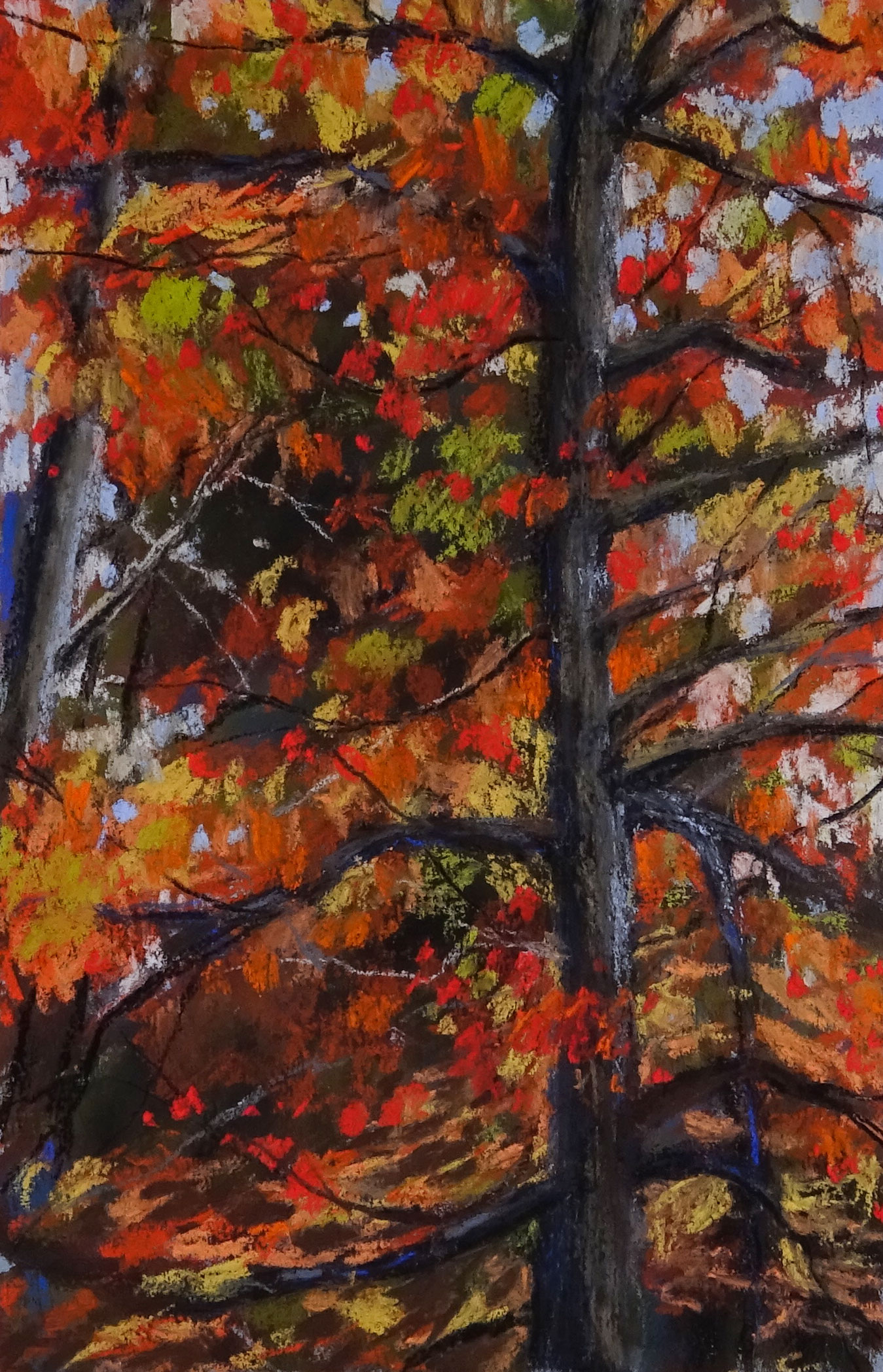 Pastel Drawing of an Autumn Tree