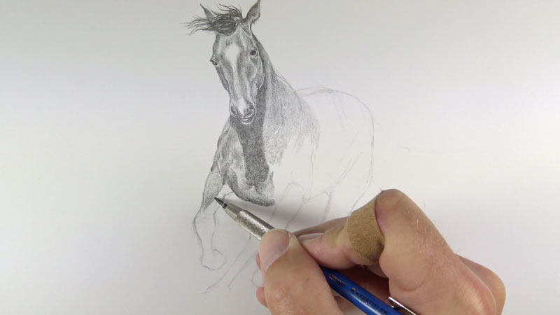 Shading the body of the horse