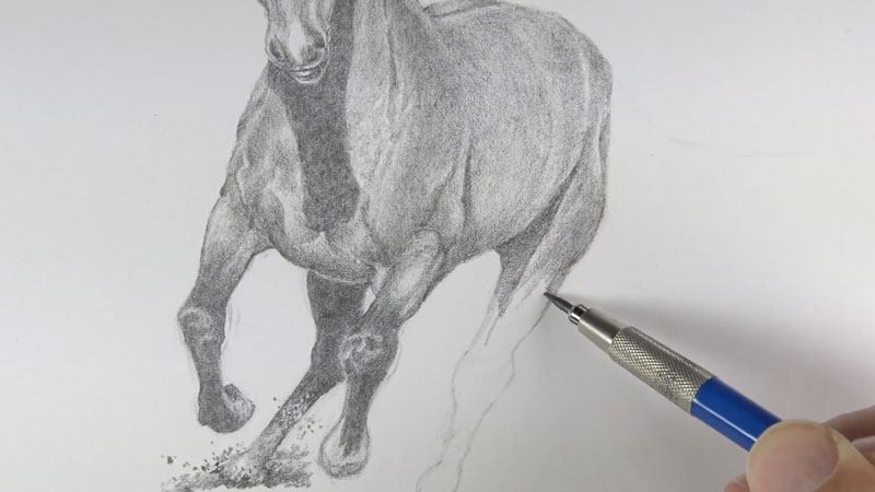 Drawing the legs of the horse