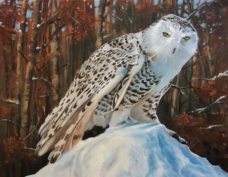 Oil Painting of a Snowy Owl