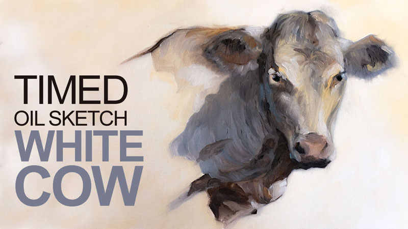 Time Oil Sketch Lesson - White Cow