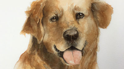 How to Paint a Dog with Watercolor