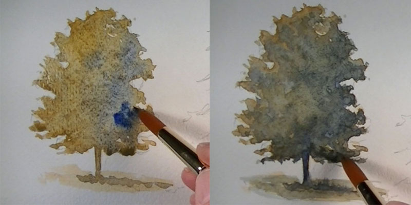 How to paint an oak tree intial washes