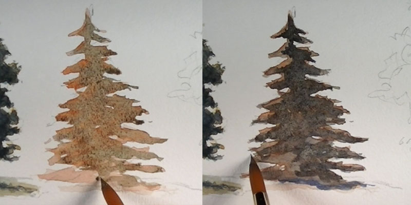 How to paint a pine tree - intial washes