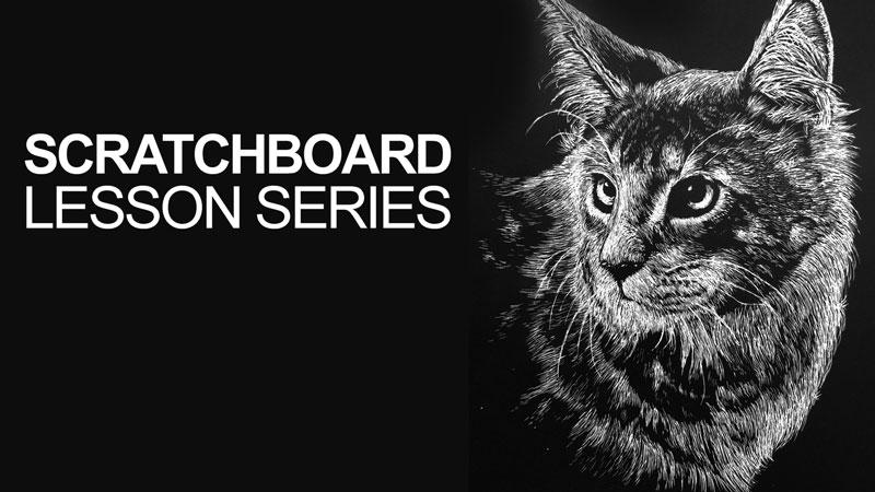 Scratchboard Cat