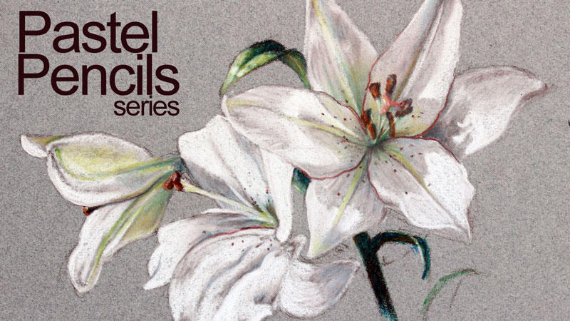 Pastel Pencil Lesson Series - Flowers