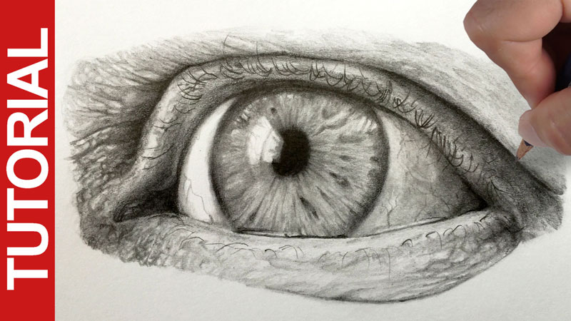 How to Draw a Realistic Eye With Graphite