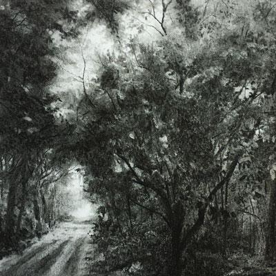 Charcoal Landscape Series