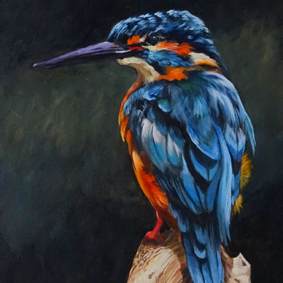 Acrylic Painting Lesson Series Bird