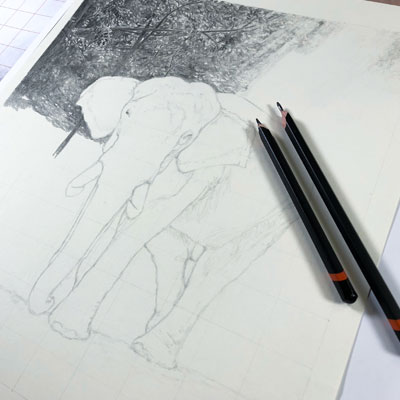 Graphite drawing lesson series - Elephant