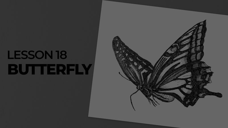 Subjects with ink - butterfly