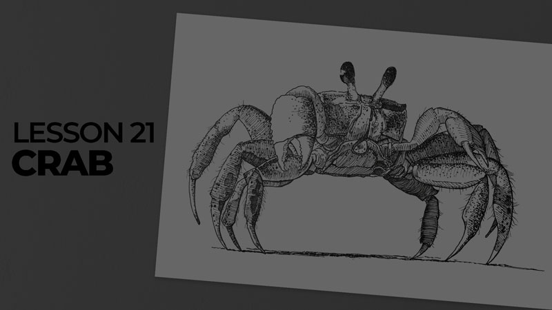 Subjects with ink - crab