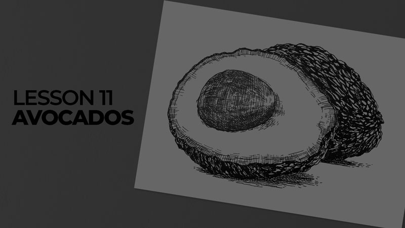 Subjects with ink - avocados