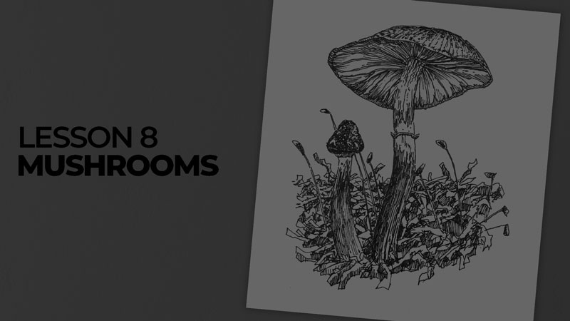 Subjects with ink - mushrooms