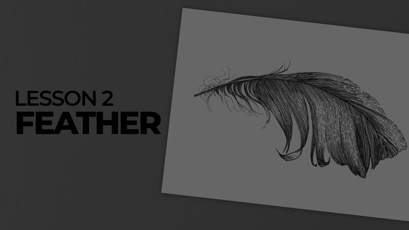 Subjects with ink - feather