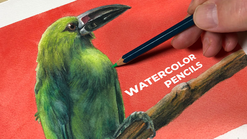 Painting with Watercolor Pencils