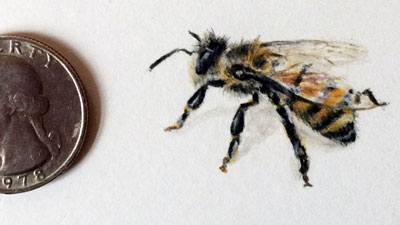 Create a Super Tiny Drawing