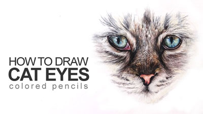 How to Draw Cat Eyes