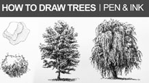 How to Draw a Tree with Pen and Ink