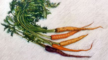 Pastel Pencils Lesson Carrots