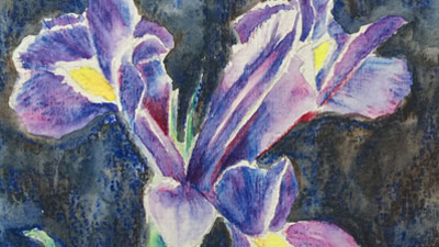 Watercolor Pencils Lesson Excerpts